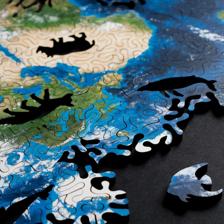 World Map Puzzle Earth Puzzle Nervous System,