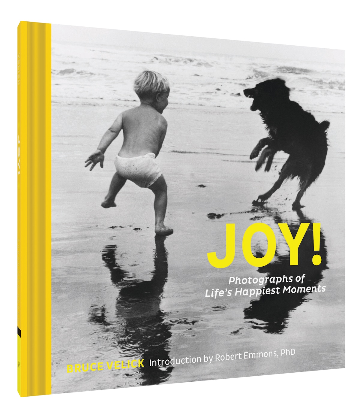 Joy Photographs of Life's Happiest Moments Joy libro fotos inspiradoras Robert Emmons Bruce Vellick