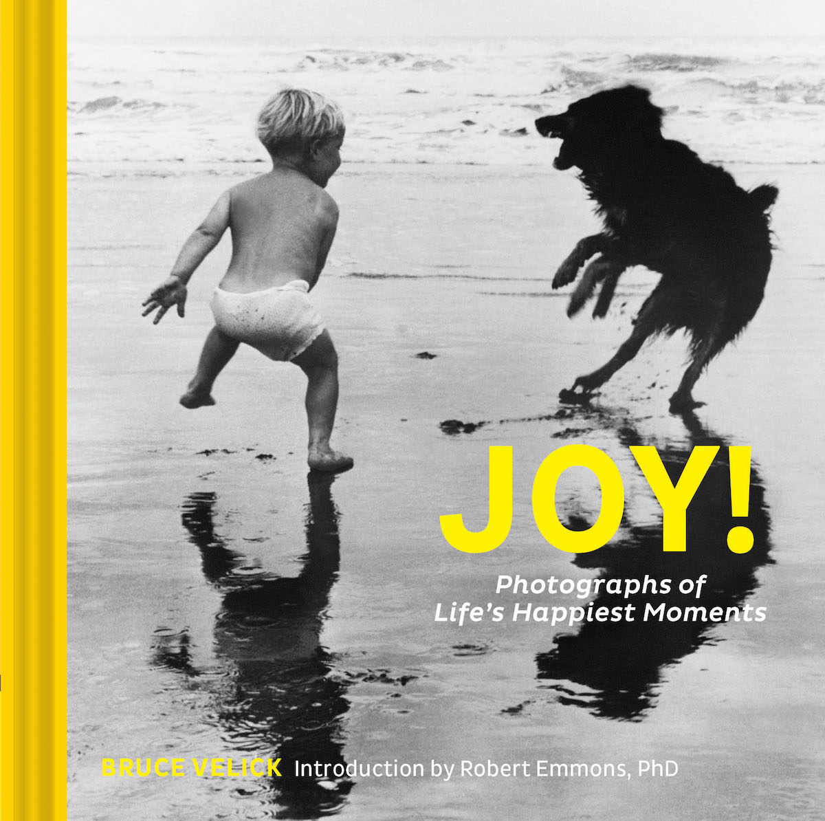 Joy Photographs of Life's Happiest Moments Joy Book Uplifting Photos Robert Emmons Bruce Velick