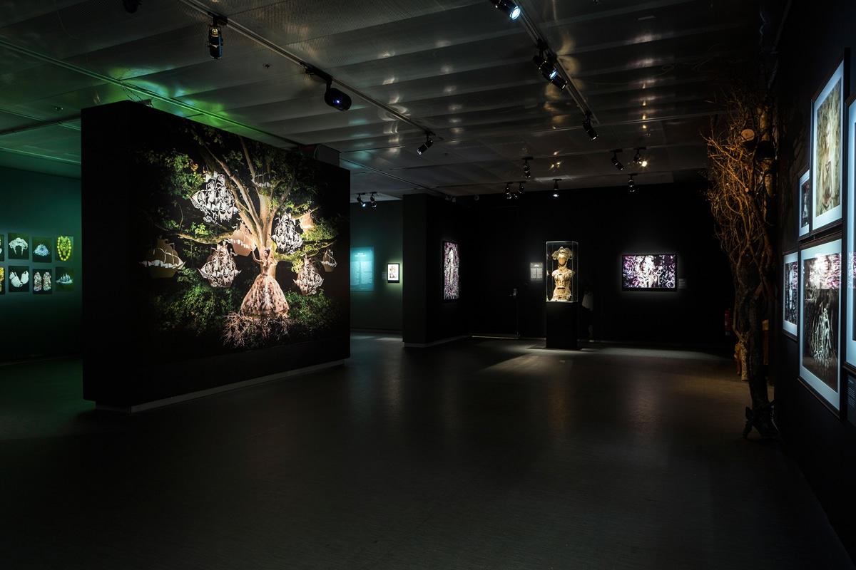 Exhibición multisensorial Wonderland Kirsty Mitchell