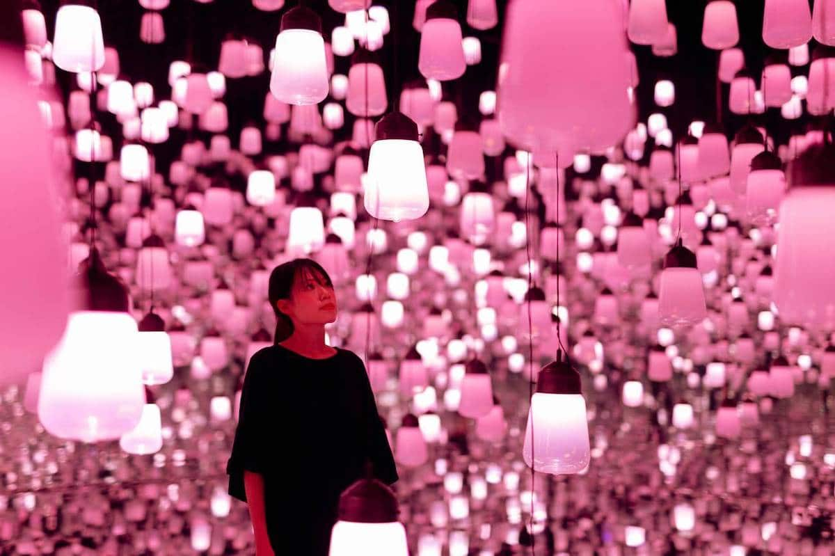 Cherry Blossom Light Installation by teamLab