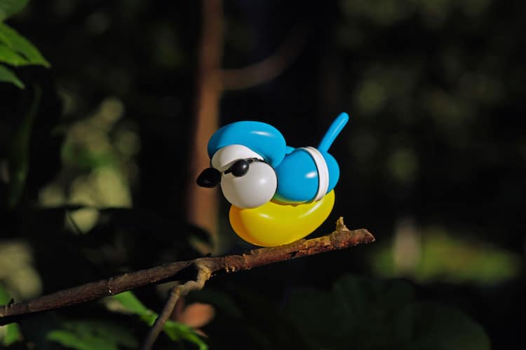 Bird Balloon Art by Terry Cook