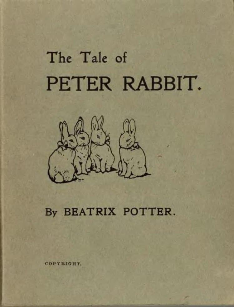 Beatrix Potter Art Beatrix Potter Books Peter Rabbit Book