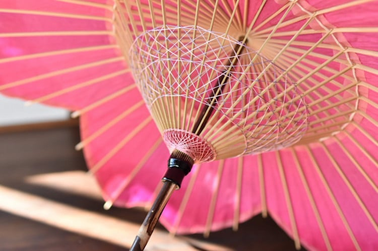 Cherry Blossom Japanese Parasol