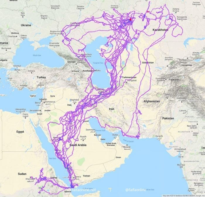 Eagle Winter Migration Routes