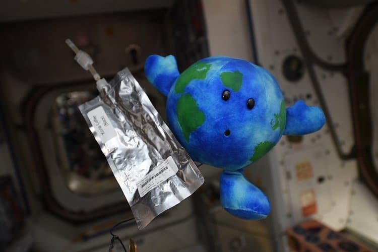 International Space Station Toy Earth