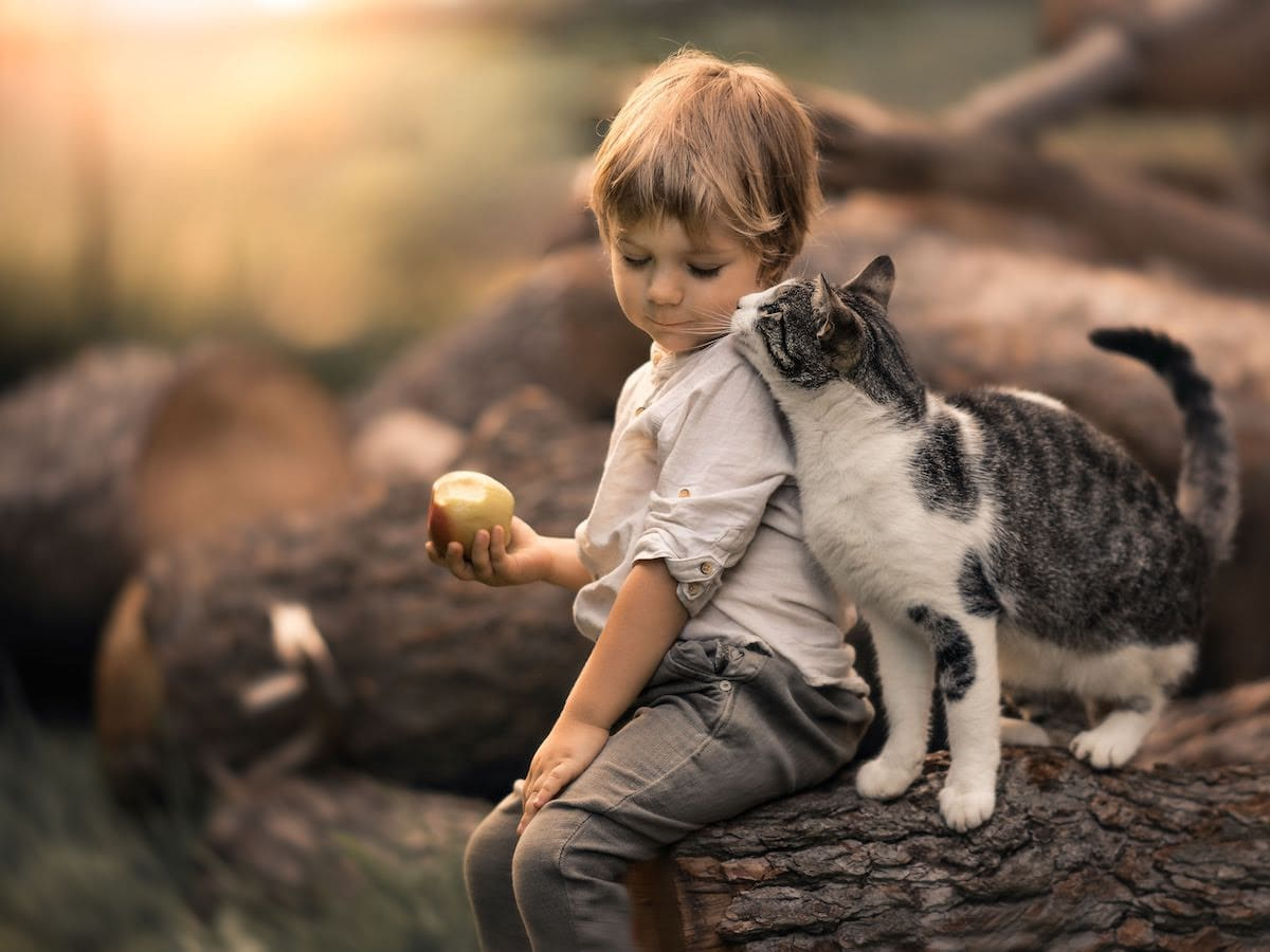 Magical Photos Childhood Photos Mom Photographs Sons Iwona Podlasinska
