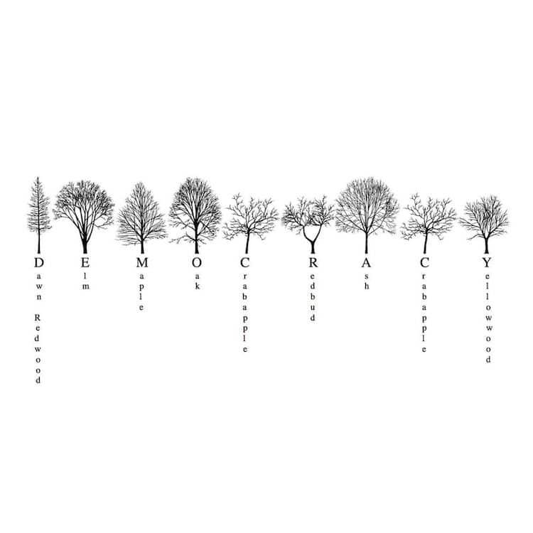 Alfabeto de árboles de Nueva York por Katie Holten