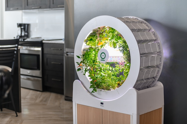 OGarden Smart - Self-Watering Indoor Garden