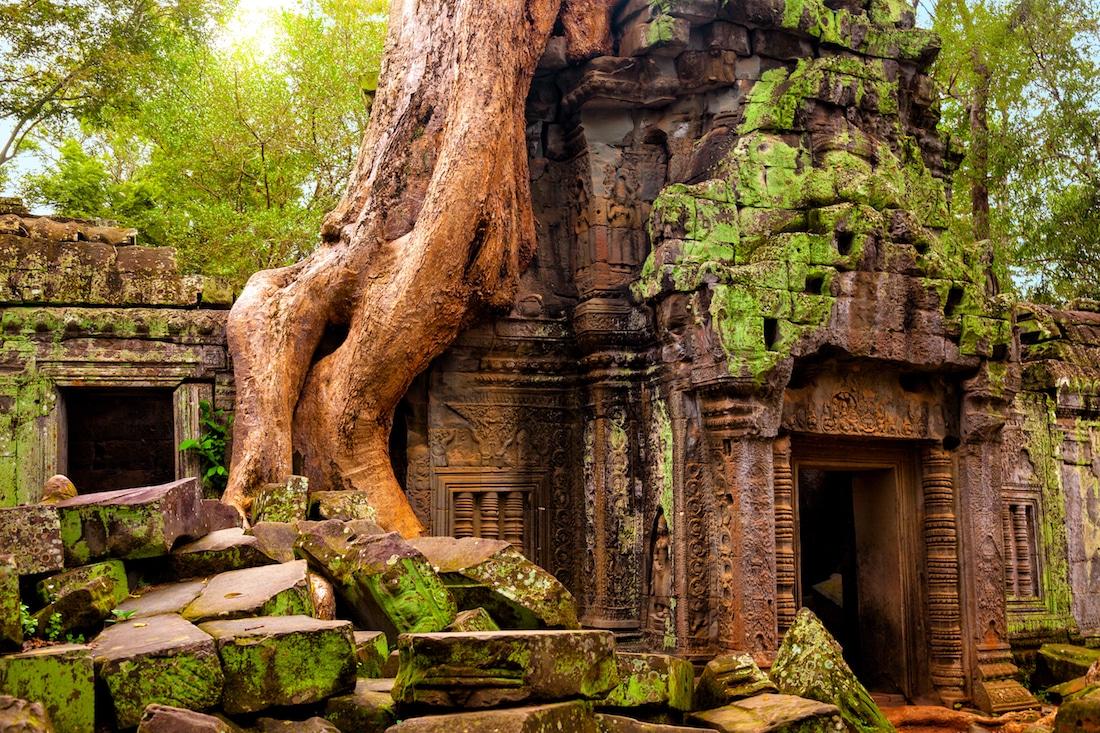 Ta Prohm là một ngôi đền nằm ở Angkor, Campuchia