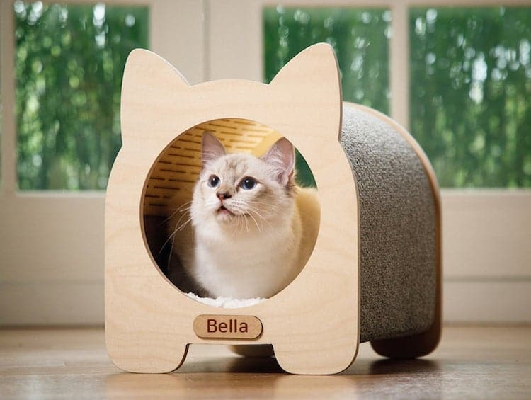 Custom Cat House