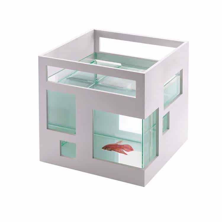 Contemporary Fish Bowl by Umbra