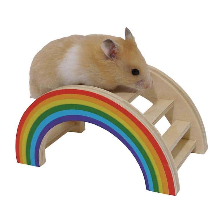 Rainbow Hamster Toy