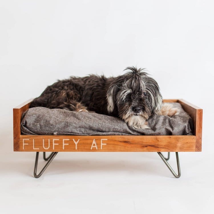 Personalized Pet Bed for Dog and Cat