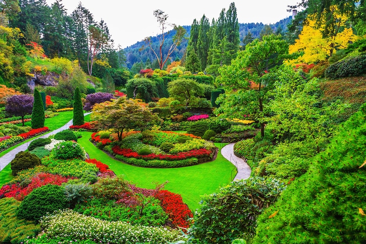 10 of the most beautiful gardens to visit around the world - Best time to visit butchart gardens ...