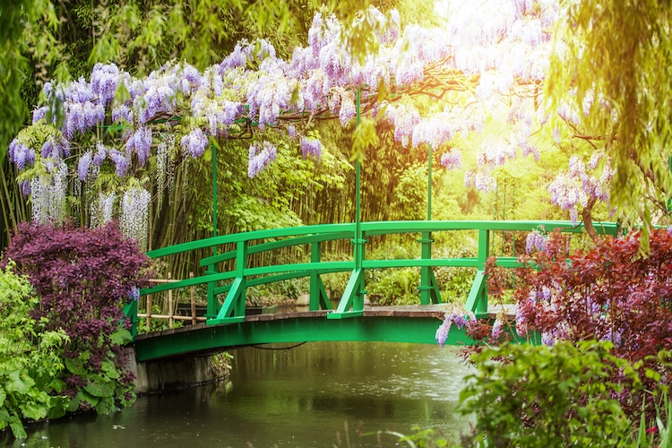 Famous Giverny Garden Painted by Monet