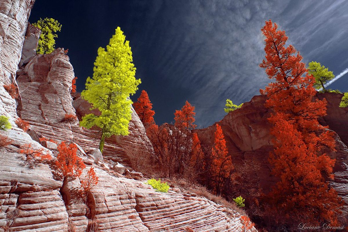 Infrared Photography Contest from Kolari Vision