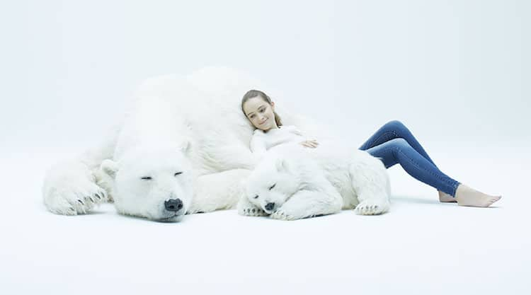 Escultura de oso polar por ANIMALS AS ART