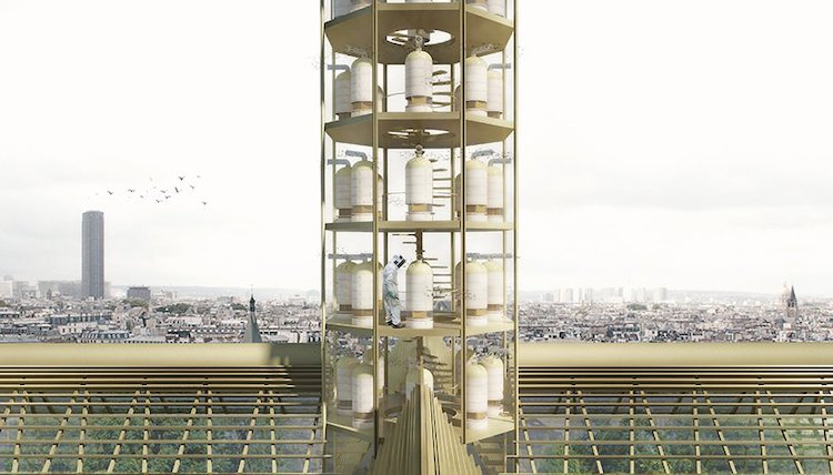 Roof Concept at Notre-Dame by Studio NAB