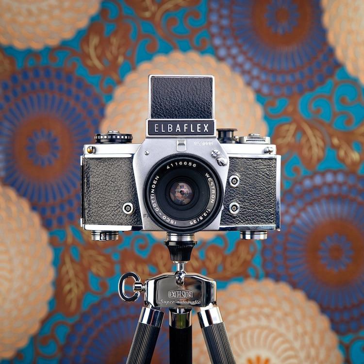 cámaras vintage CameraSelfies by J. F. Novotny