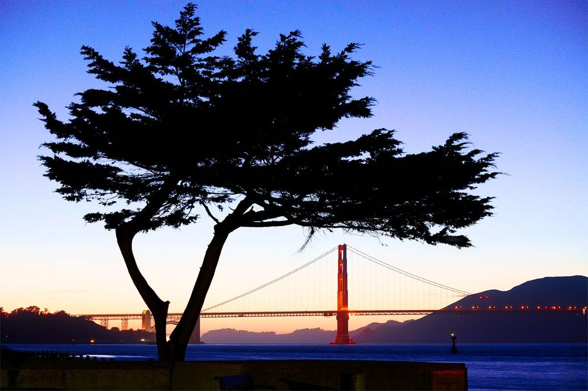 San Francisco by Adrien Le Falher