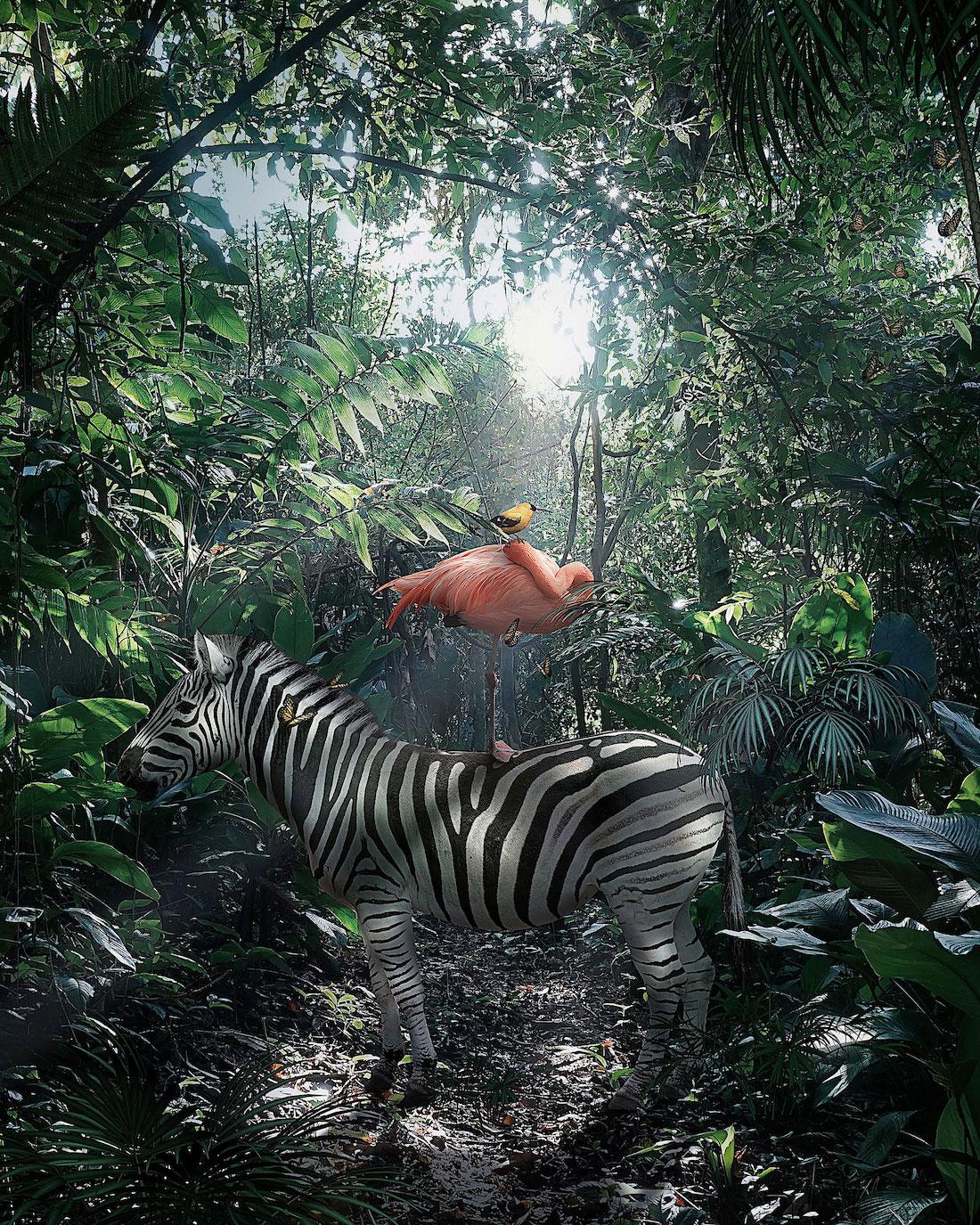 Andreas Haggkvist Animal Composites