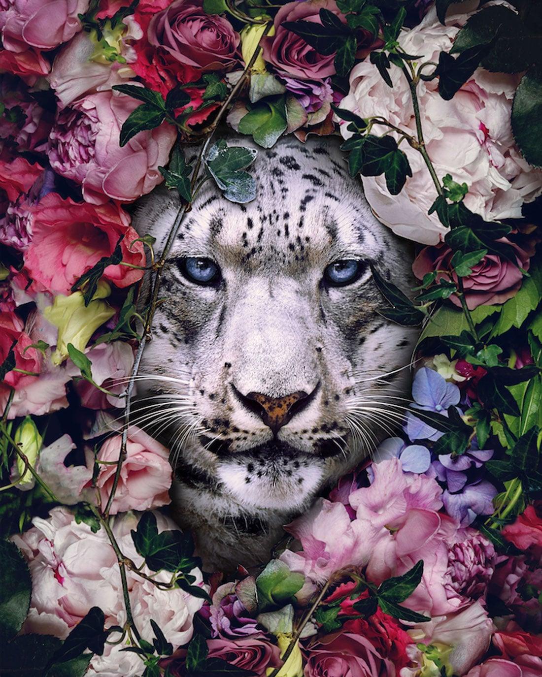 Andreas Haggkvist Digital Animal Art