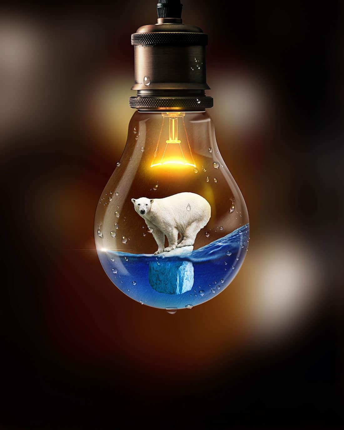 Andreas Haggkvist Surreal Animal Art