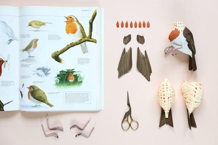 Uccelli esotici di carta riprodotti meticolosamente di Diana Beltran Herrera