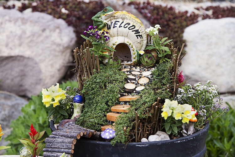 Fairy Garden Ideas Ideas DIY