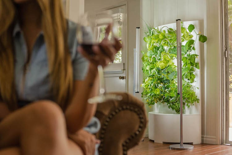 Automatic Hydroponic Indoor Garden