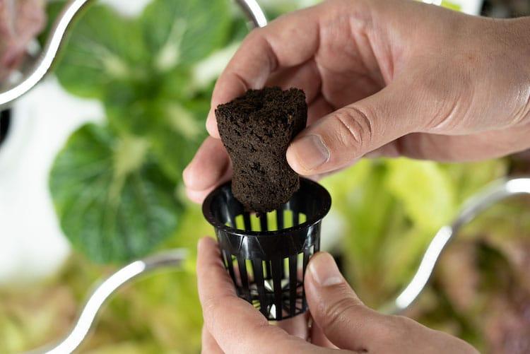 Grow Up to 30 Fruits & Veggies With Hydroponic Indoor Garden