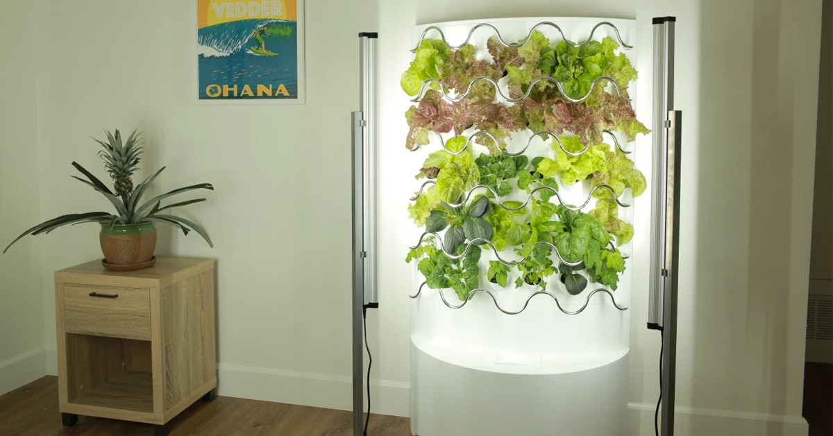 Grow Up to 30 Fruits & Veggies With Hydroponic Indoor Garden