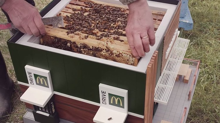McDonald's Beehive McHive by NORDDDB