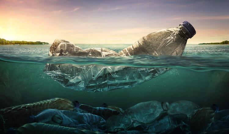 conservación del océano