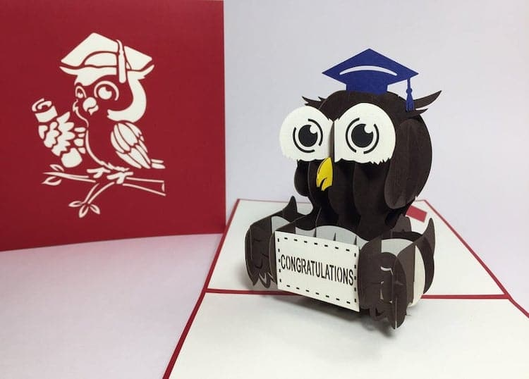3D Owl Graduation Card