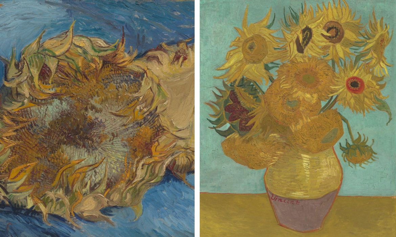 Estallar Delgado violación  La historia y significado de las pinturas de girasoles de Van Gogh