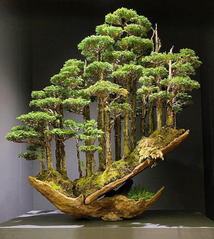 Masahiko Kimura contemporary bonsai master