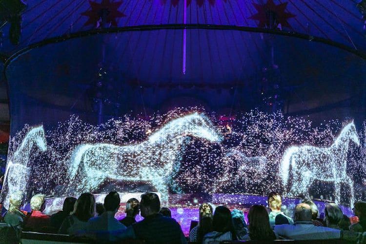 circus roncalli circo hologramas animales alemania