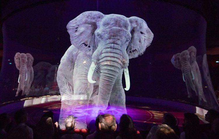 Hologram Circus Animals Roncalli Circus