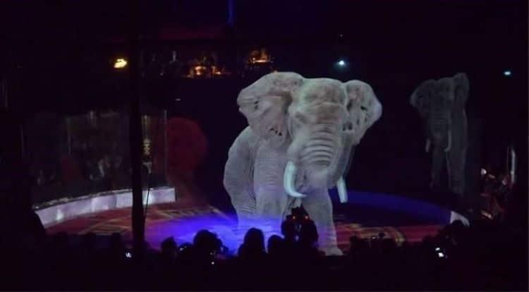 hologramas de animales