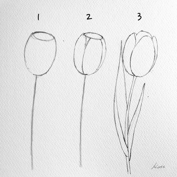 How to Draw a Flower by Kate Kyehyun Park