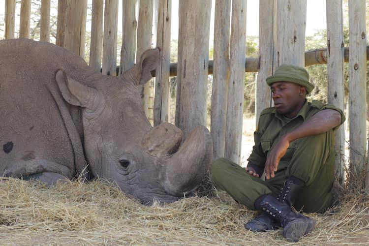 James Mwenda of Ol Pejeta Conservancy