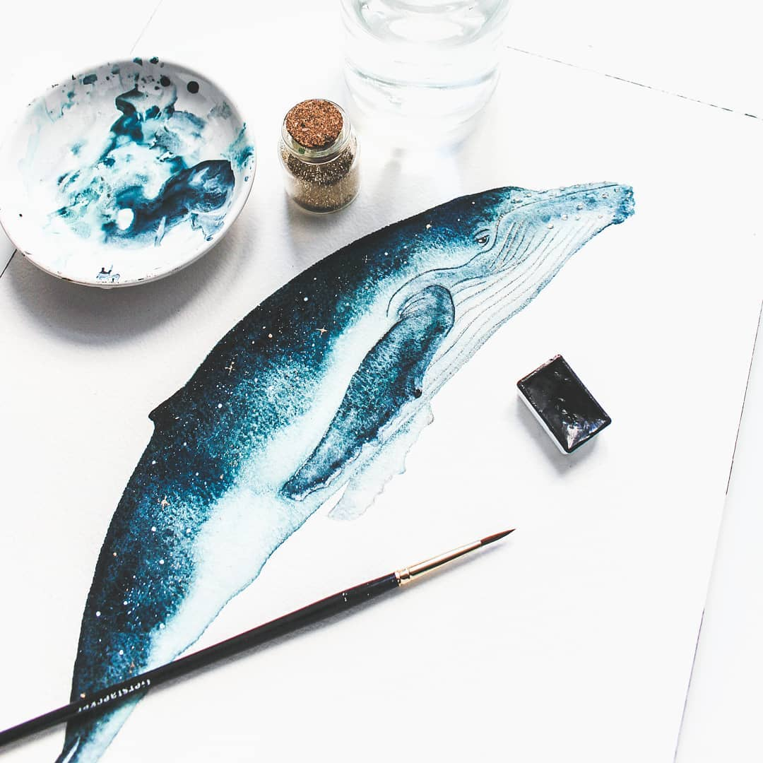 Whale Watercolor Illustrations by Canan Esen
