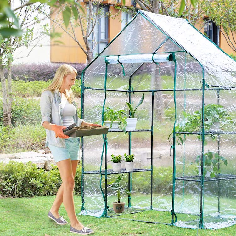 Amazon Greenhouse