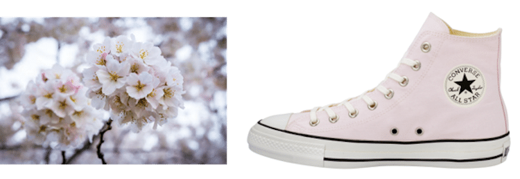 Sakura Converse Shoes