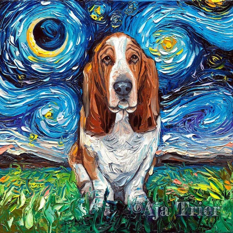 Noche estrellada con mascotas