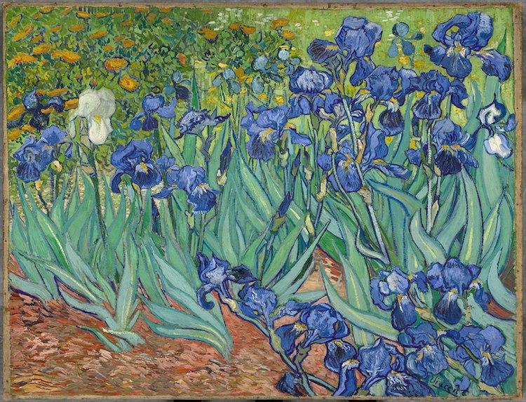 Lugares Donde Hay 10 De Las Pinturas Más Famosas De Vincent Van Gogh