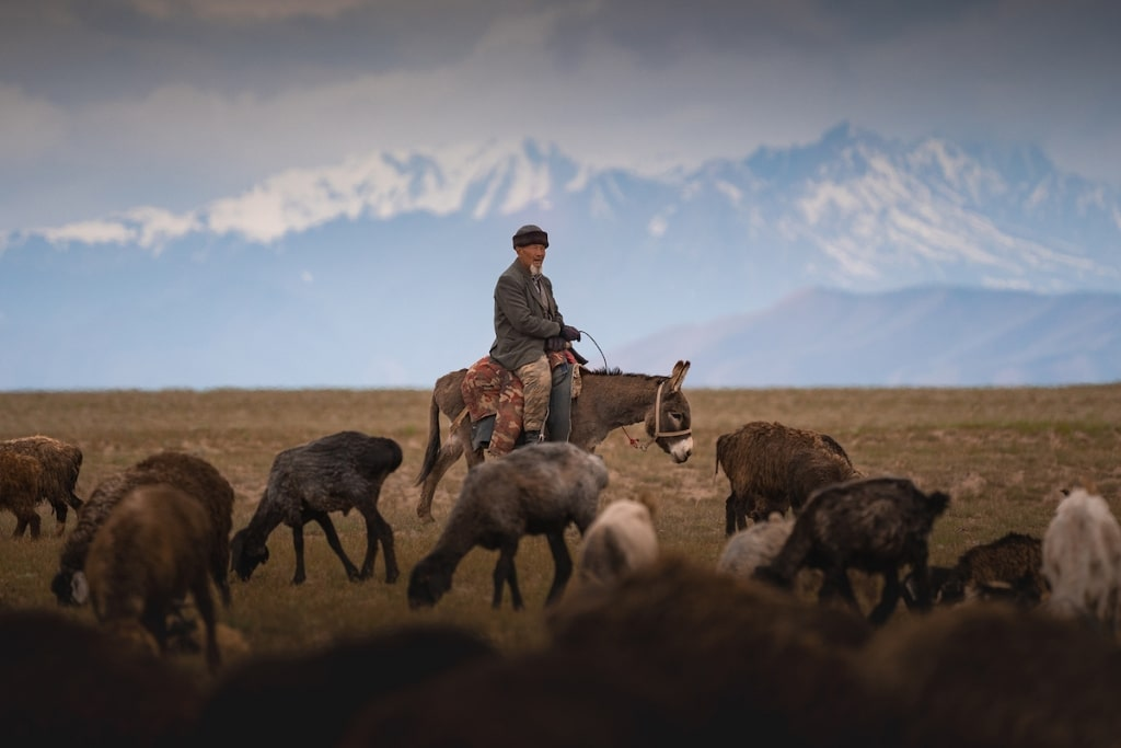 Man on a Horse in Kyrgyzstan