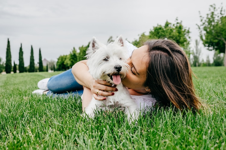 Survey Says Most Dog Owners Kiss Their Pups More Than Their